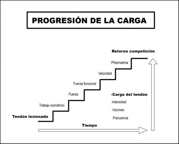 tabla-gestion-carga-para-tendinopatia-degenerativa