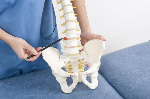 Médico-con-una-pluma-muestra-una-hernia-en-un-esqueleto-a-un-paciente.